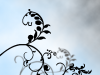 avatar_mfhrdnsw03